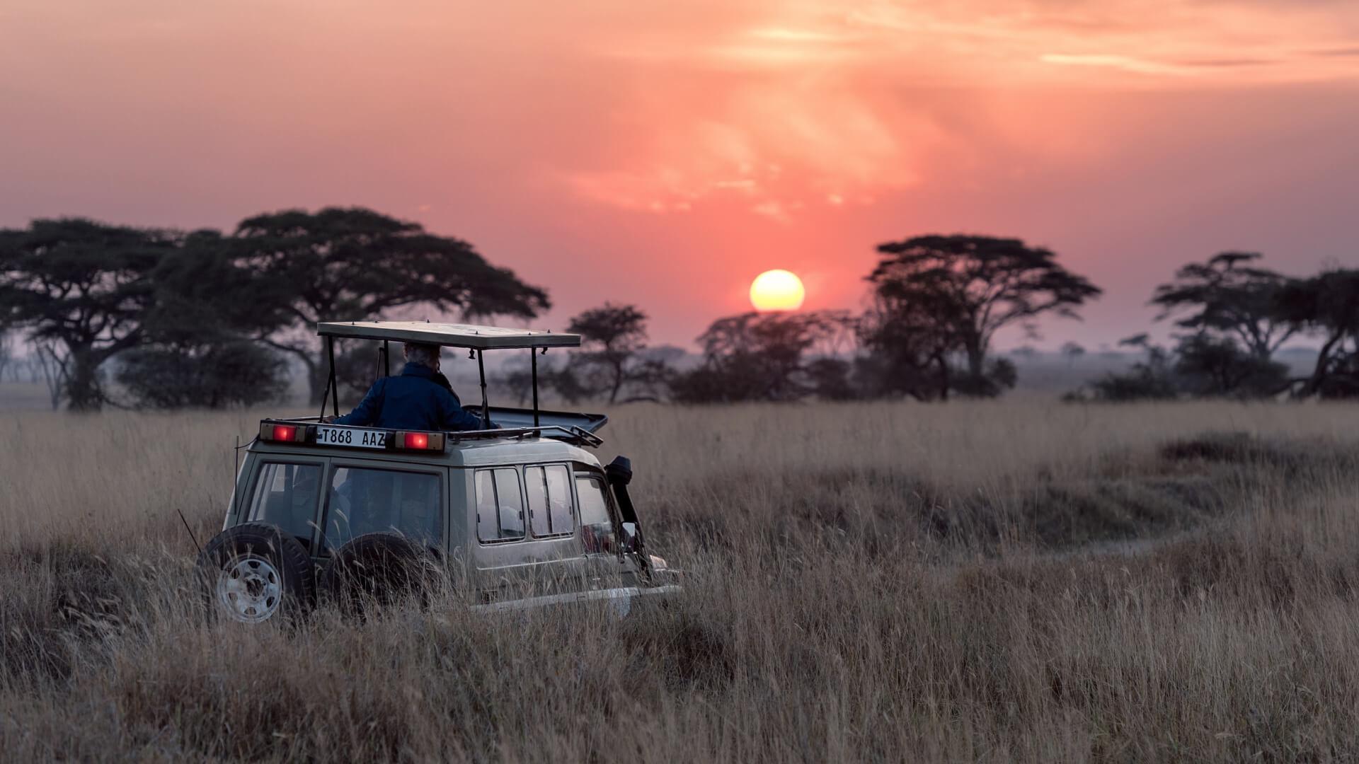 Safari Tours Tour Packages